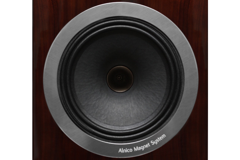 Tannoy DC10A driver