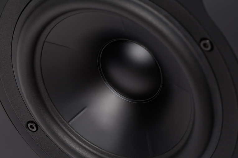 Revel Performa3 M106 mid-woofer